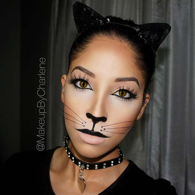 makeup ideas for cat face