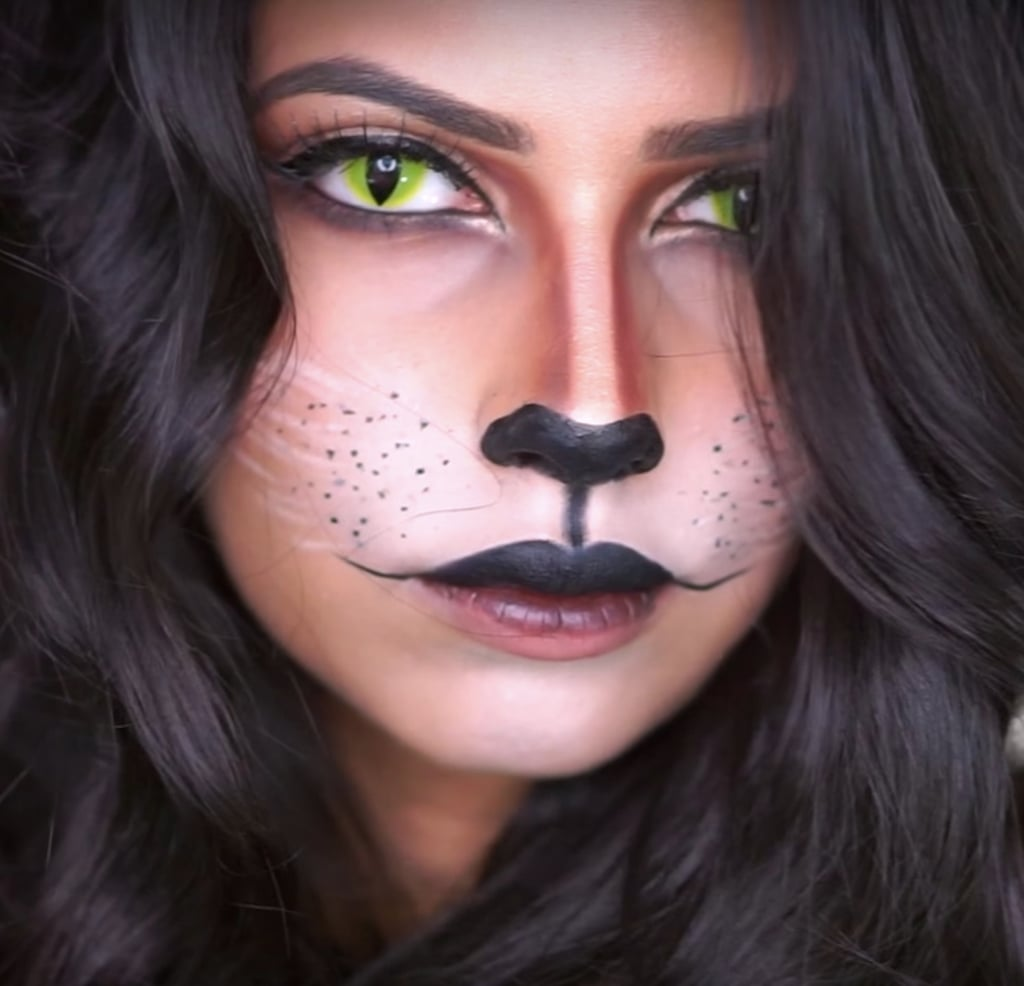 ideas for cat makeup